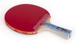 DHS A6002 Table Tennis Bat