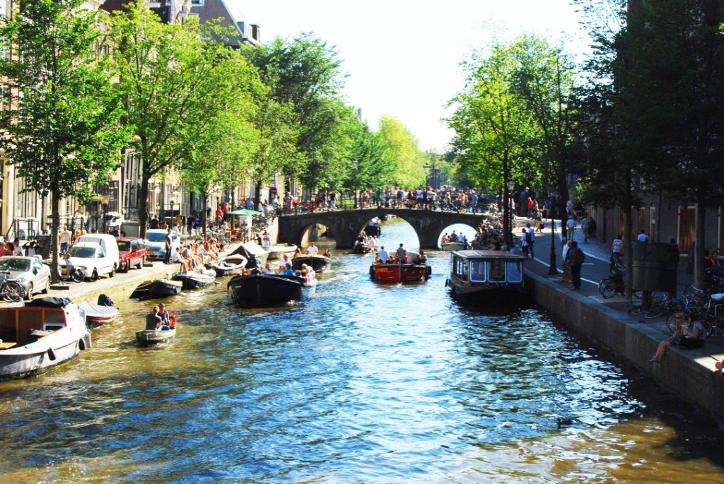 expats living in the netherlands
