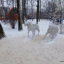 Drunk reindeer.