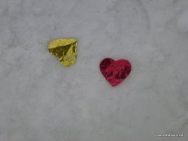 Confetti in the snow :)