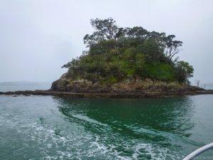 Little island on Bay of Islands.