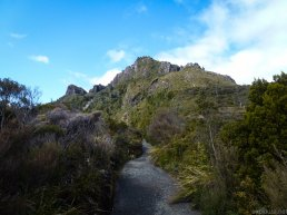 The ascent to the Pinnacles - WAY steeper than it looks.