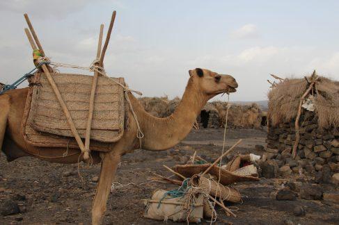 voyage-ethiopie-erta ale-campement