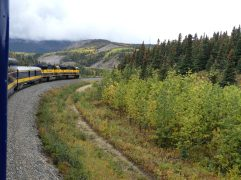 train-fairbanks-denali-52