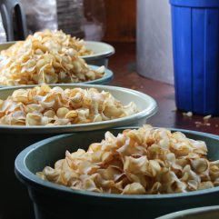 voyage-sumatra-bukittinggi-ummi aufa hakim chips (1)