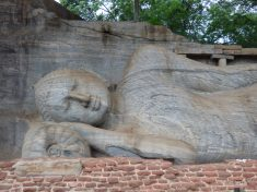 voyage-sri-lanka-polonnaruwa-gal-vihara-10