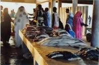 marché-poisson1