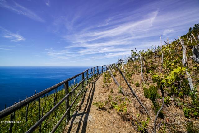 Visitare le Cinque Terre 4 itinerari da ricordare