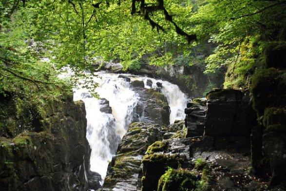 bosque más bonito de escocia