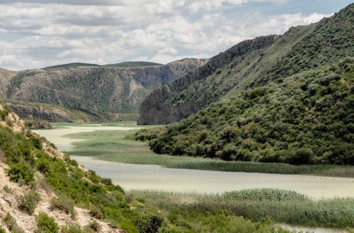 L'embouchure du Lac Sidi Salem: Une diversité d'habitats qui abritent diverses espèces animales