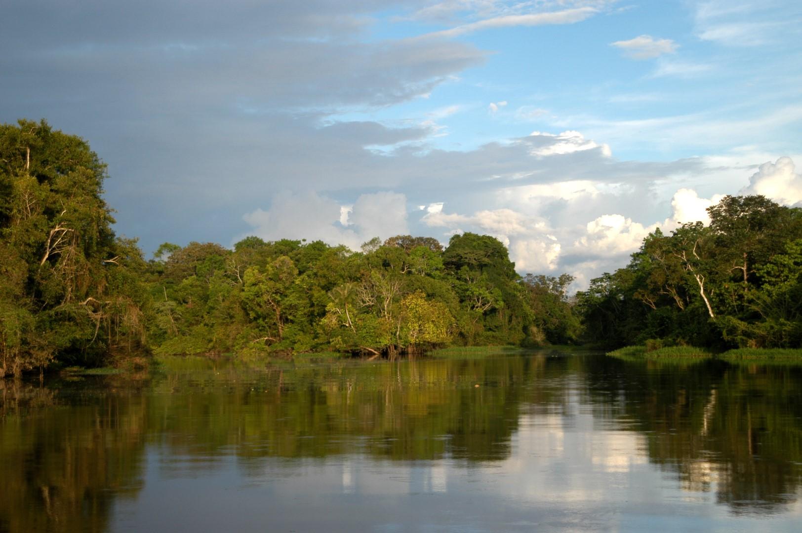 Amazon River   Trips Amazon River   Amazon Lodge Iquitos   Amazon River Tour   Amazon River Cruises   Rainforest Adventure   Canopy Walkway ...