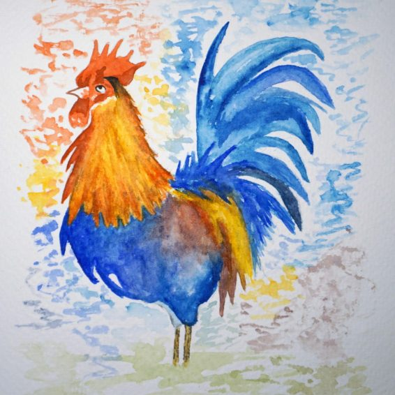 48. Rooster