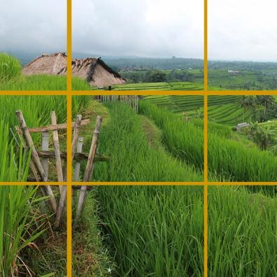 Jatiluwih Rice Terraces, Bali. The horizon is near the top line and the subject of the picture (the small bamboo fence) is on the left line.