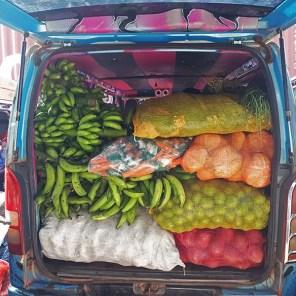 The minivan is getting full...