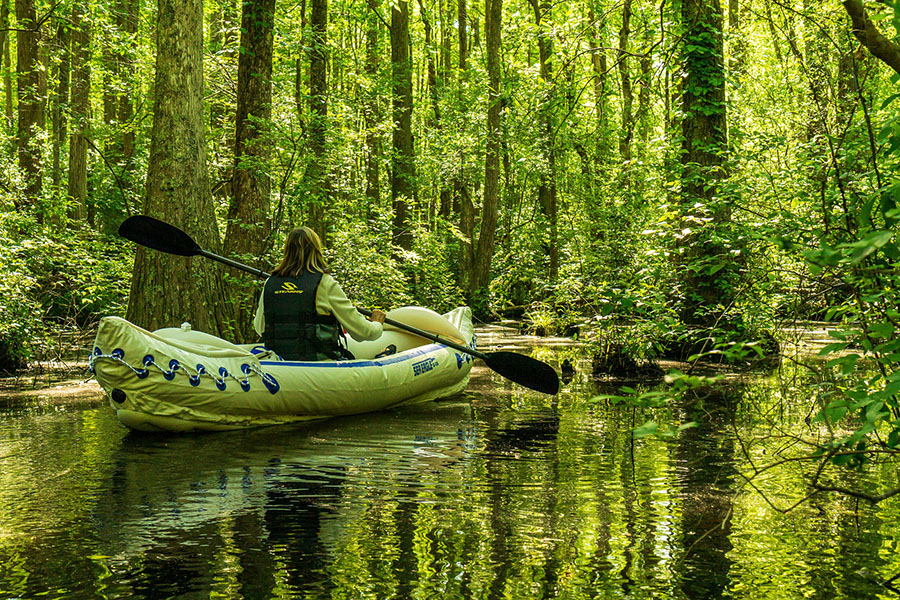 Inflatable kayak Forest