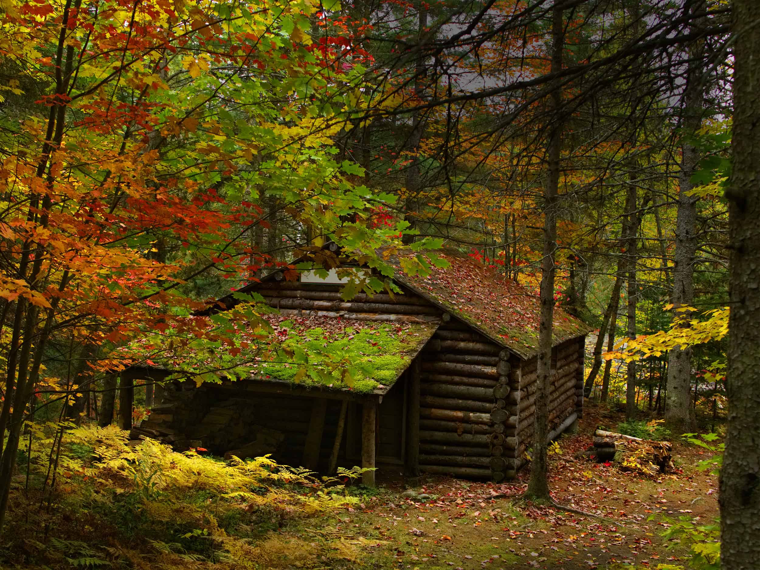 Fall Themed Wallpaper 20 Cozy Cabins For An Autumn Escape In Manitoba Explore