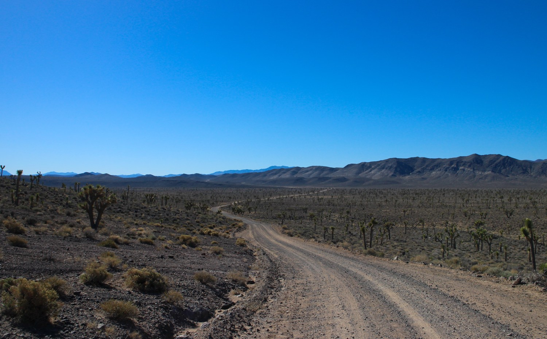 Death Valley 2015 15962150794