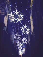 Snowflake Alley, Annapolis, MD