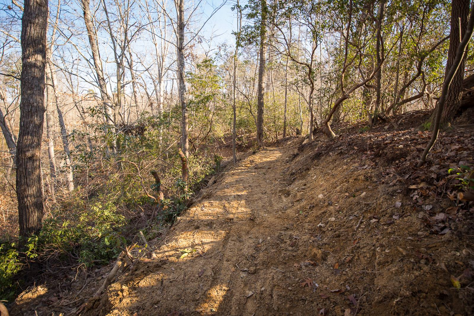 5 Mountain Bike Trails to Try in Gainesville   Official Georgia Tourism & Travel Website   Explore Georgia.org