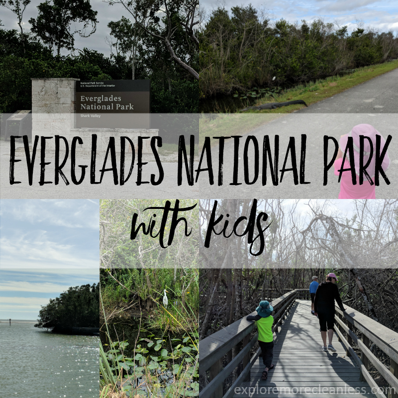 Everglades National Park with kids
