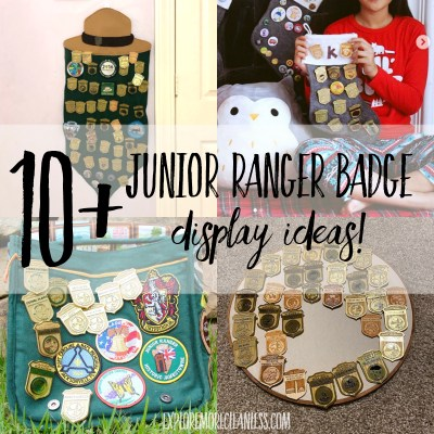 10+ junior ranger badge display ideas!