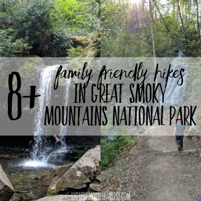 8+ kid friendly hikes in smoky mountain national park