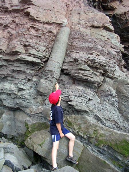 Joggins Fossil Cliffs Nova Scotia Walking Trail Destinations