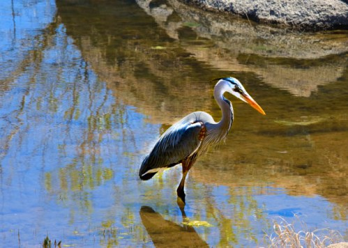 Explore Prescott Arizona and outdoor activities