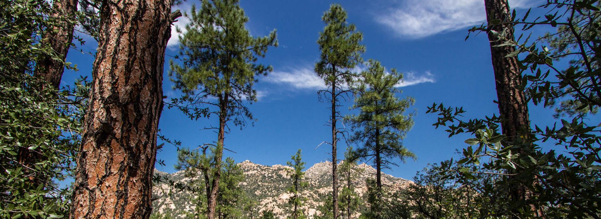 Granite Basin Recreation Area Explore Prescott Az