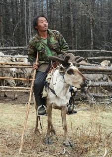 Homme Tsaatan regardant au loin sur le dos de son renne