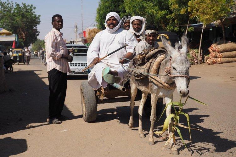 Hommes avec charrette tirée par un âne au Soudan