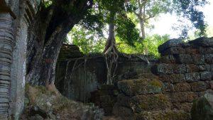 angkor archaeological park Siem Reap Cambodia 2017