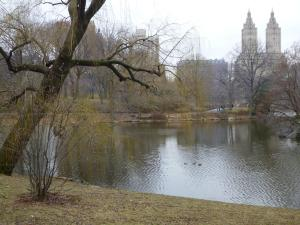 View of The Eldorado in New York from The Lake in Central Park