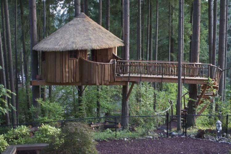 Afria in Auburn Treehouse