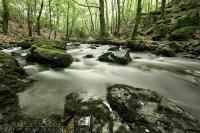 Aktivurlaub in der Auvergne
