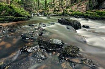 creek Sichon in the bourbonnaise