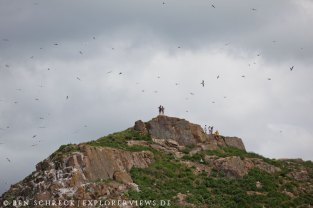 Vogelschutzgebiet Ilot Verdelet