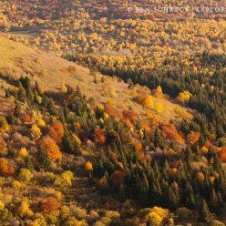 Auvergne Puy de Dome Autumn 8760