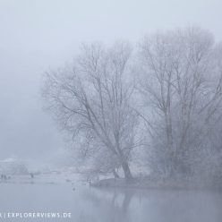 Landschaftsfotografie Weiden im Winter 7887