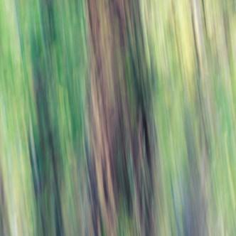 Baum Malerei 2