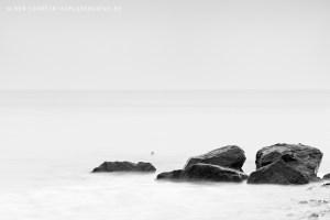 Steine am Meer 4522