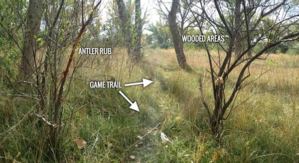 Game trail identifiers