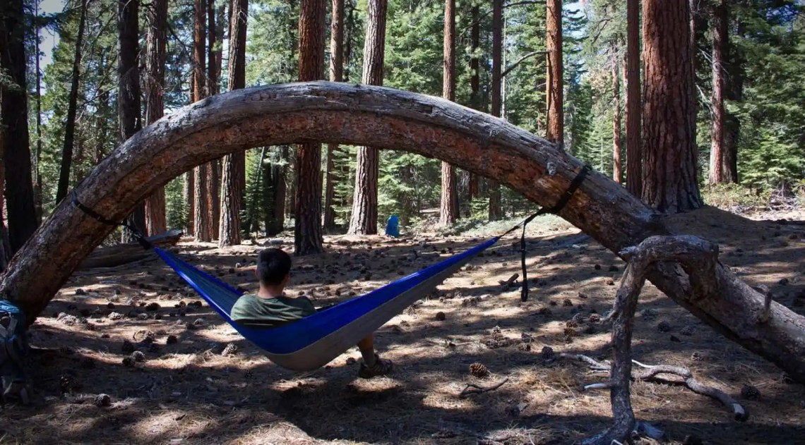 Image Result For How To Hang A Hammock From A Tree