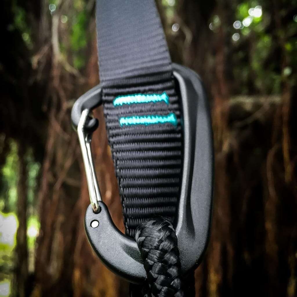 serac sequoia carabiner on a banyan tree