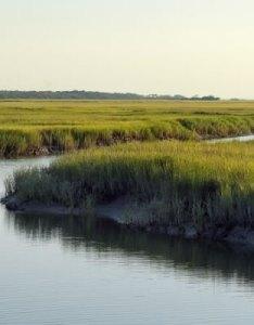 St simons island marsh georgia also marhes of the glynn sidney lanier hymns marshes poem rh explorestsimonsisland