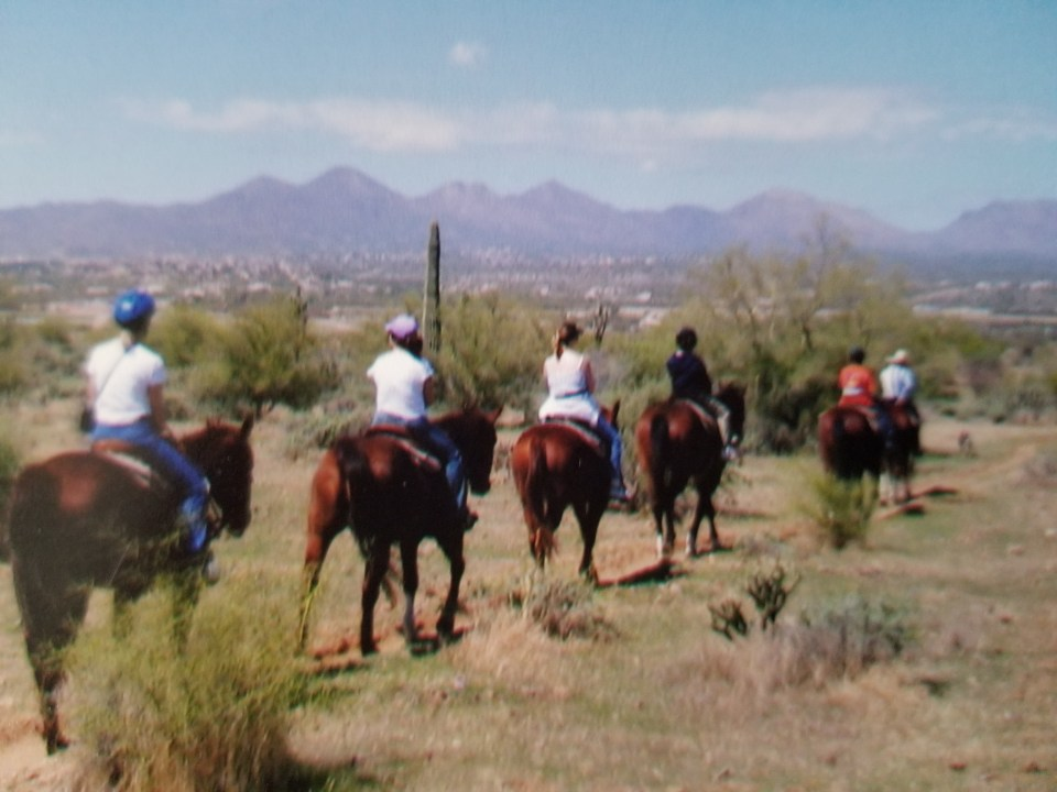 Horses on the trail through the desert at Fort McDowell in Scottsdale