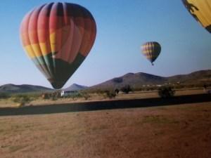 hot air balloons rising above the desert