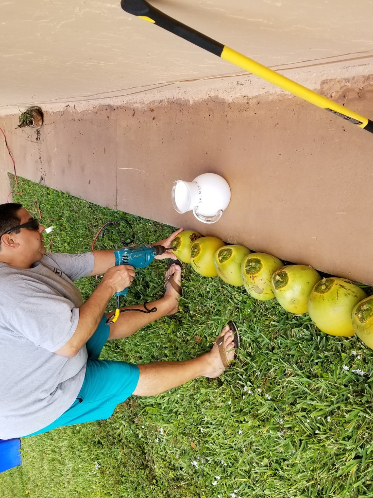 a man drilling coconuts to remove coconut water