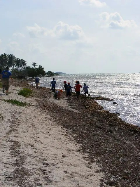 Cub scouts playing by the water at Sugarloaf Key