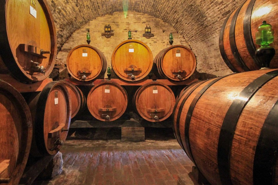 shows casks of wine in a wine cellar